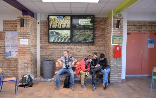 Nicolas Tourte et le Lycée Professionnel Agricole de Dunkerque - Paysages microcosmiques